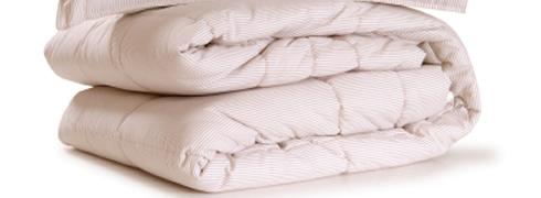 Daunenbett Und Andere Füllmaterialien Für Bettdecken