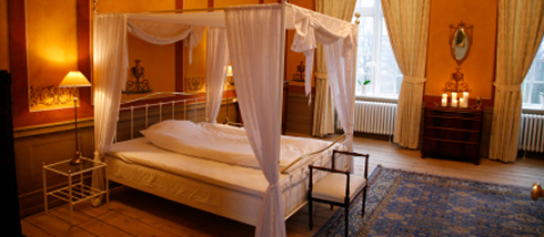 himmelbett mit praktischem nutzen so kaufen sie richtig. Black Bedroom Furniture Sets. Home Design Ideas